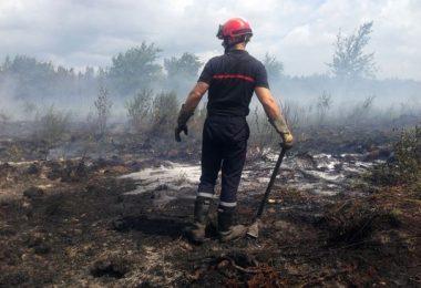 آتش سوزی جنگلهای کاج در منطقه ژیروند فرانسه